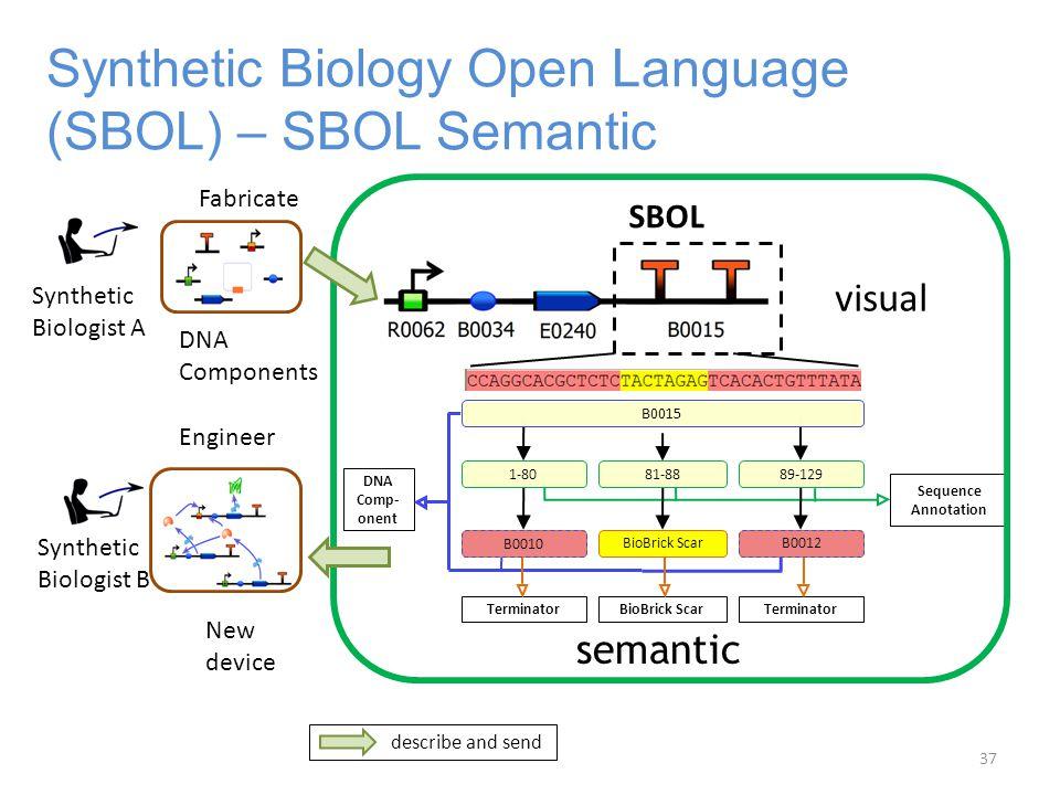 Synthetic Biology Open Language (SBOL) – SBOL Semantic semantic Sequence Annotation 1-80 Terminator 81-88 BioBrick Scar 89-129 Terminator B0010 B0012