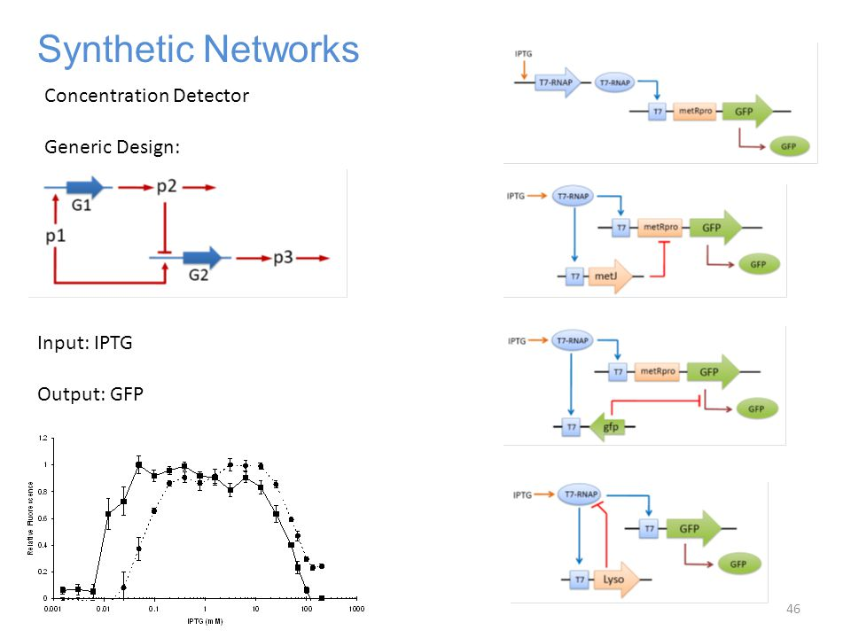 Synthetic Networks Input: IPTG Output: GFP Concentration Detector Generic Design: 46