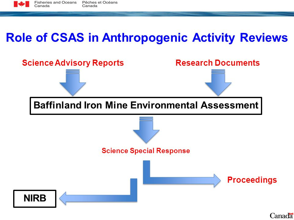 Role of CSAS in Anthropogenic Activity Reviews Science Advisory Reports Science Special Response Baffinland Iron Mine Environmental Assessment Proceedings Research Documents NIRB