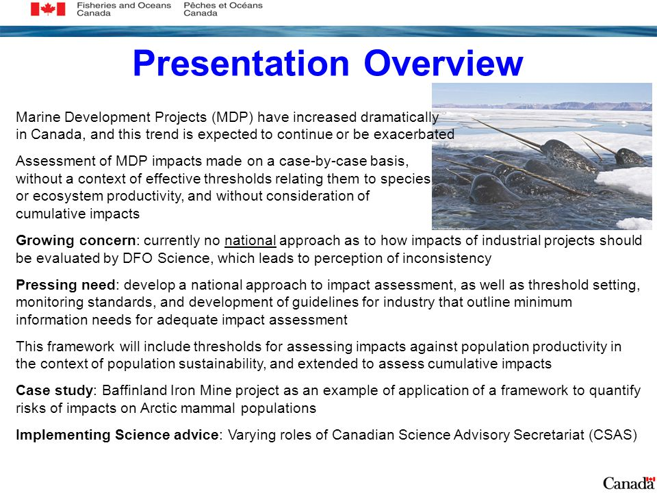 Presentation Overview Marine Development Projects (MDP) have increased dramatically in Canada, and this trend is expected to continue or be exacerbated Assessment of MDP impacts made on a case-by-case basis, without a context of effective thresholds relating them to species or ecosystem productivity, and without consideration of cumulative impacts Growing concern: currently no national approach as to how impacts of industrial projects should be evaluated by DFO Science, which leads to perception of inconsistency Pressing need: develop a national approach to impact assessment, as well as threshold setting, monitoring standards, and development of guidelines for industry that outline minimum information needs for adequate impact assessment This framework will include thresholds for assessing impacts against population productivity in the context of population sustainability, and extended to assess cumulative impacts Case study: Baffinland Iron Mine project as an example of application of a framework to quantify risks of impacts on Arctic mammal populations Implementing Science advice: Varying roles of Canadian Science Advisory Secretariat (CSAS)