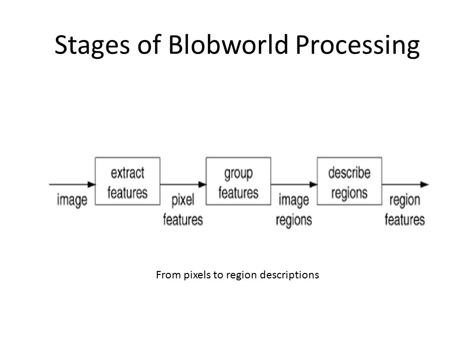 Stages of Blobworld Processing From pixels to region descriptions