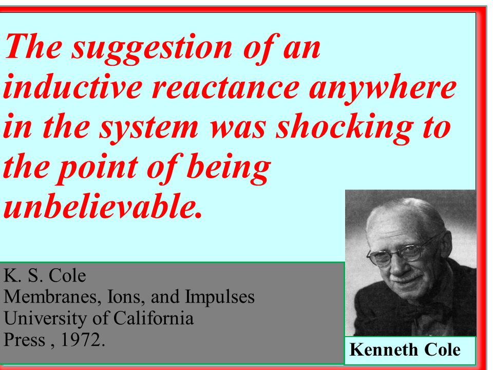 K. S. Cole Membranes, Ions, and Impulses University of California Press, 1972. Kenneth Cole The suggestion of an inductive reactance anywhere in the s