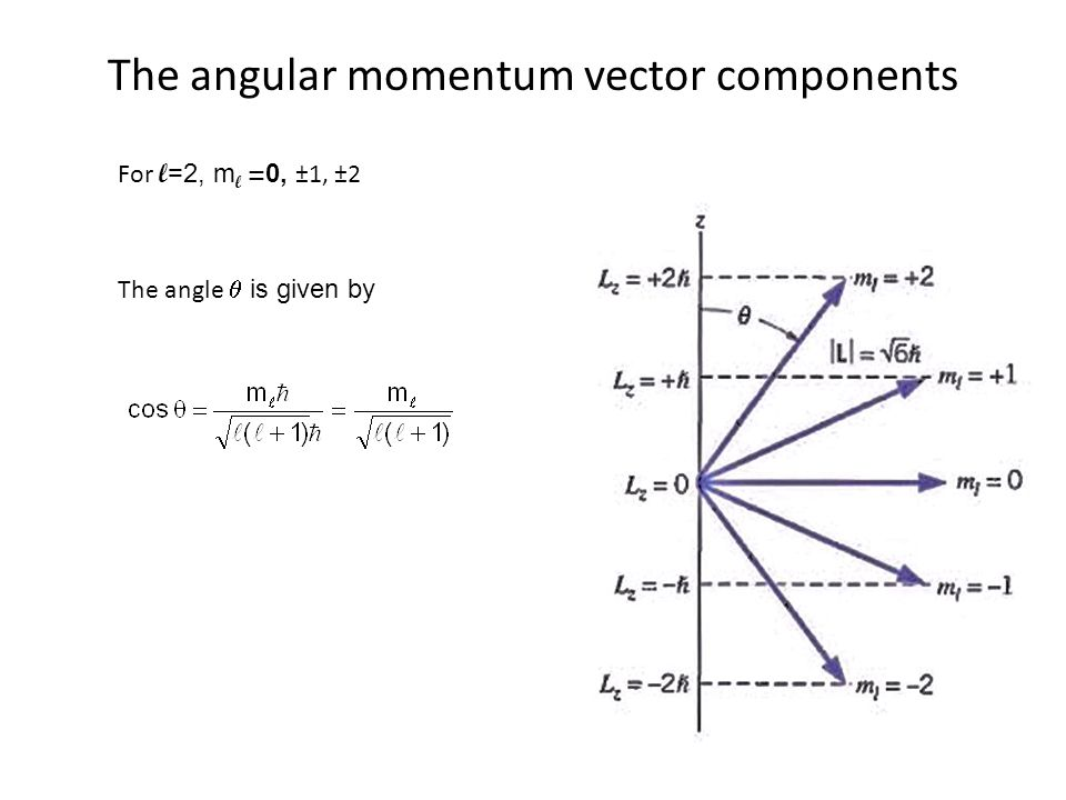 The angular momentum vector components For l =2, m l = 0, ±1, ±2 The angle  is given by