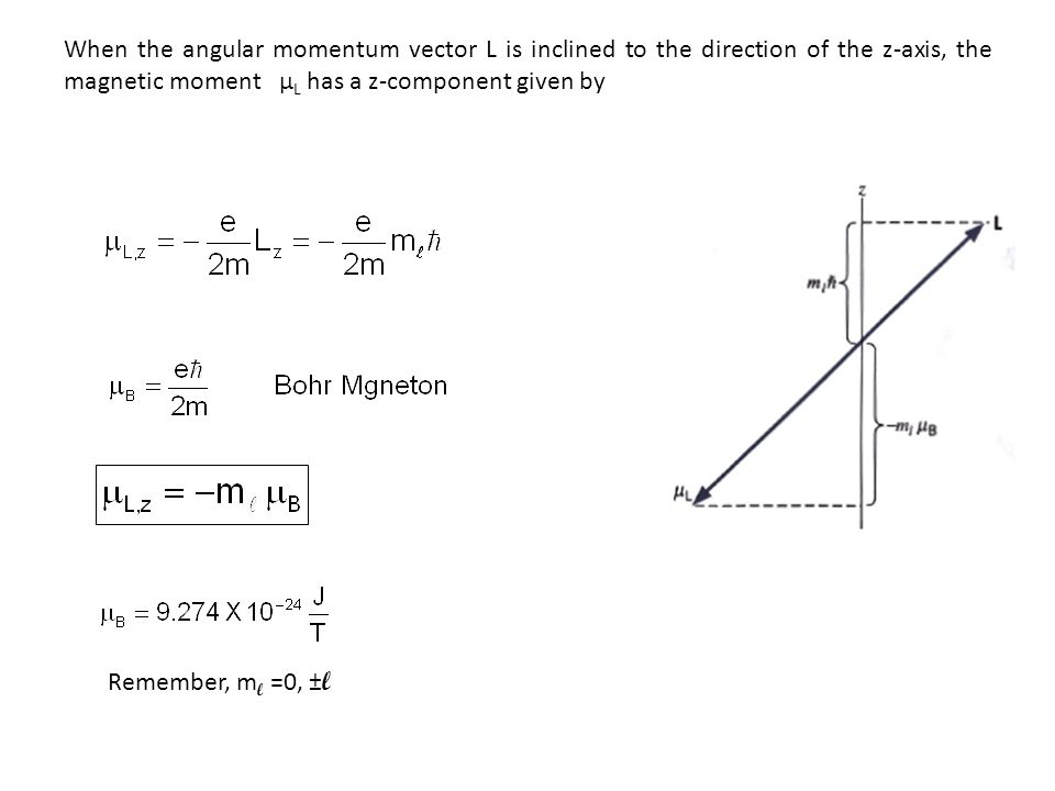 When the angular momentum vector L is inclined to the direction of the z-axis, the magnetic moment µ L has a z-component given by Remember, m l =0, ± l