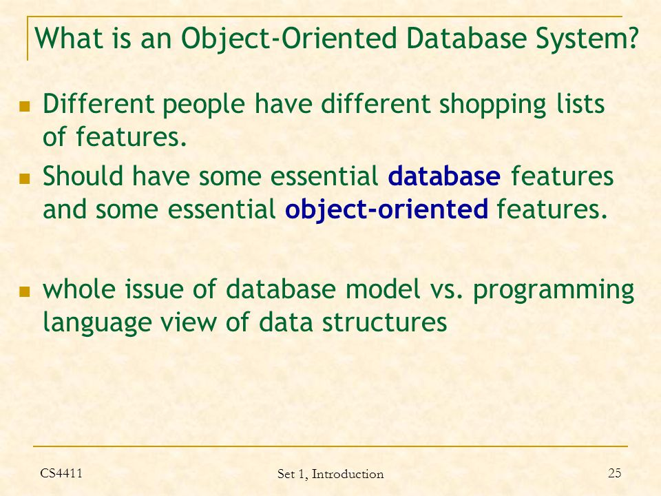 What is an Object-Oriented Database System.