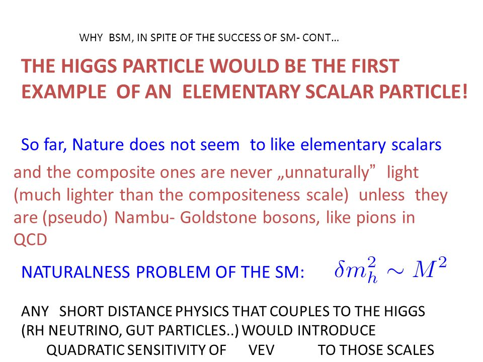 THE HIGGS PARTICLE WOULD BE THE FIRST EXAMPLE OF AN ELEMENTARY SCALAR PARTICLE! So far, Nature does not seem to like elementary scalars and the compos