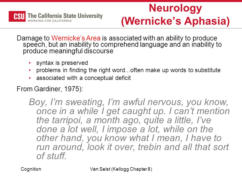 CognitionVan Selst (Kellogg Chapter 8) Neurology (Wernicke's Aphasia) Damage to Wernicke's Area is associated with an ability to produce speech, but an inability to comprehend language and an inability to produce meaningful discourse syntax is preserved problems in finding the right word...often make up words to substitute associated with a conceptual deficit From Gardiner, 1975): Boy, I'm sweating, I'm awful nervous, you know, once in a while I get caught up.