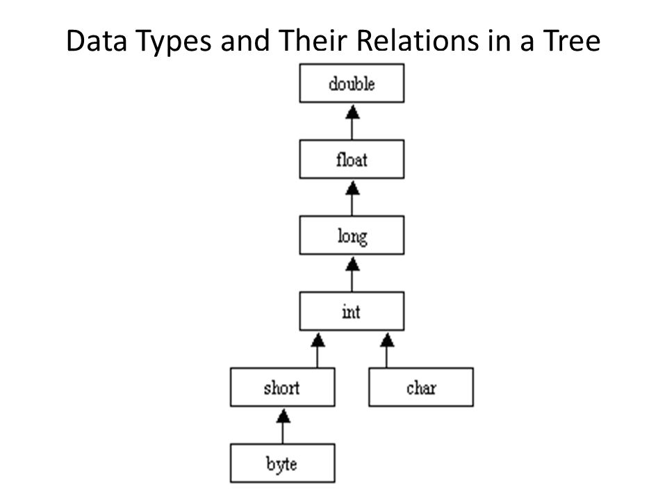 Data Types and Their Relations in a Tree