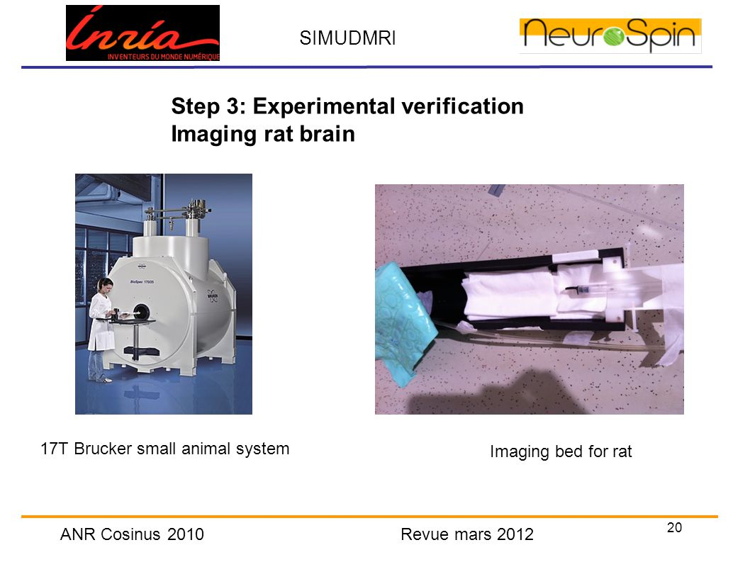 20 SIMUDMRI ANR Cosinus 2010 Revue mars 2012 Step 3: Experimental verification Imaging rat brain 17T Brucker small animal system Imaging bed for rat