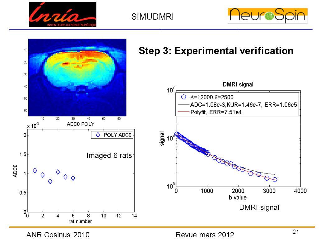 21 SIMUDMRI ANR Cosinus 2010 Revue mars 2012 Step 3: Experimental verification DMRI signal Imaged 6 rats