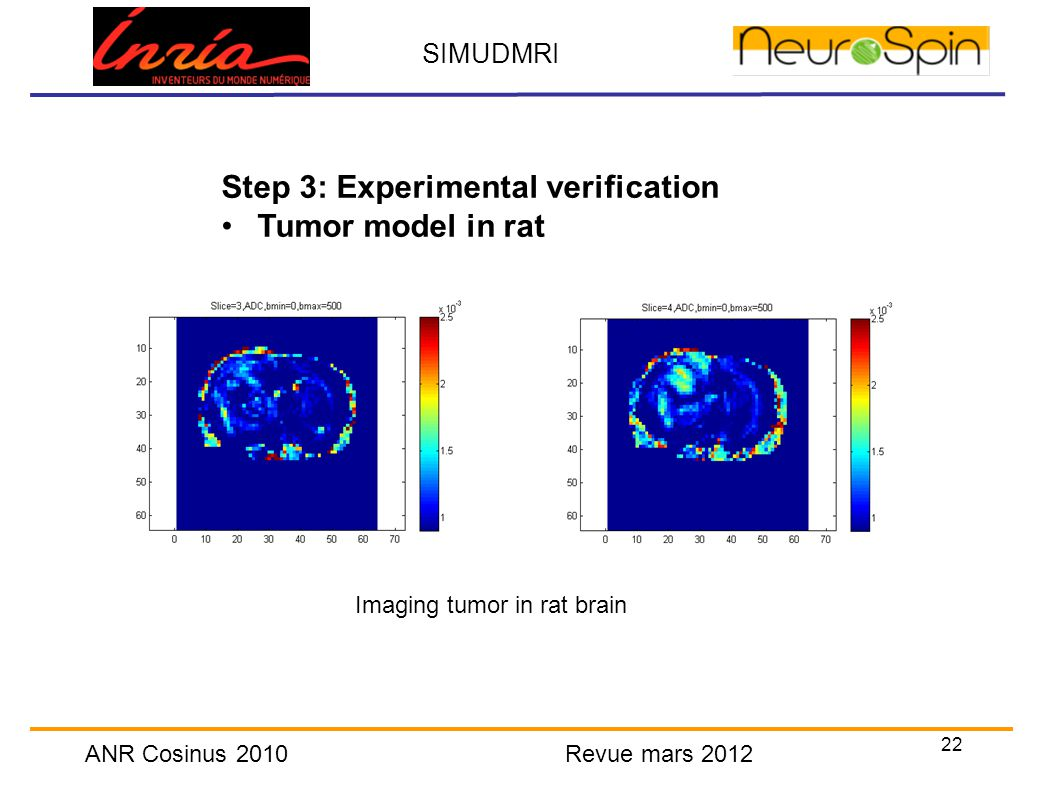 22 SIMUDMRI ANR Cosinus 2010 Revue mars 2012 Step 3: Experimental verification Tumor model in rat Imaging tumor in rat brain