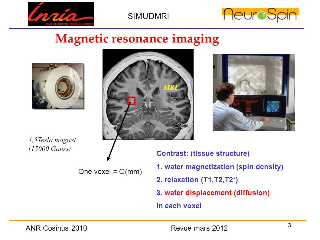 3 SIMUDMRI ANR Cosinus 2010 Revue mars 2012 Magnetic resonance imaging Contrast: (tissue structure) 1.