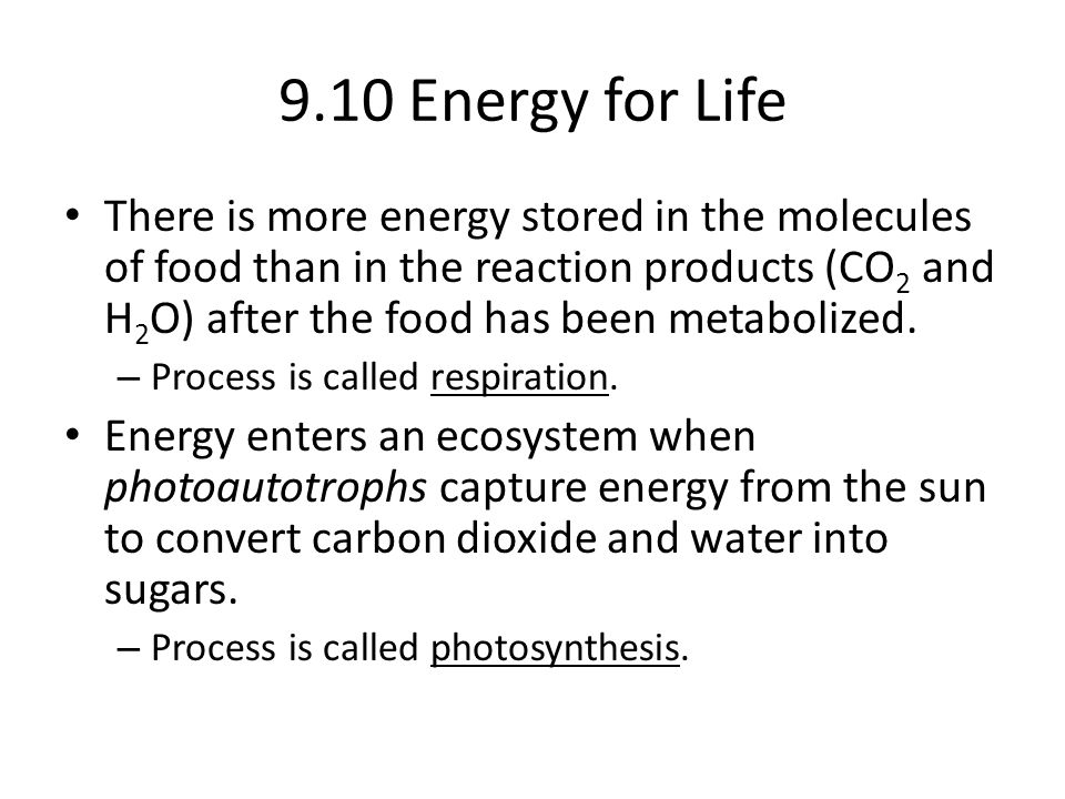 9.10 Energy for Life There is more energy stored in the molecules of food than in the reaction products (CO 2 and H 2 O) after the food has been metabolized.