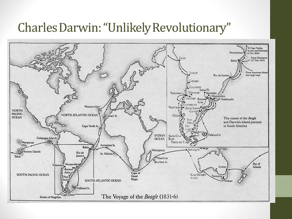 "Charles Darwin: ""Unlikely Revolutionary"""