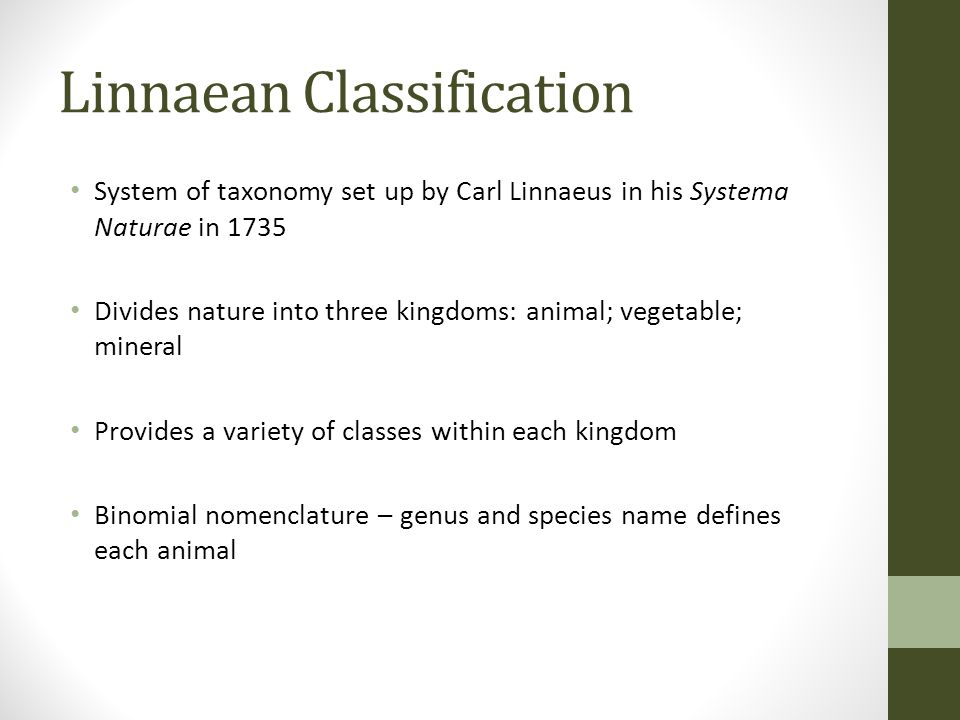 Linnaean Classification System of taxonomy set up by Carl Linnaeus in his Systema Naturae in 1735 Divides nature into three kingdoms: animal; vegetabl