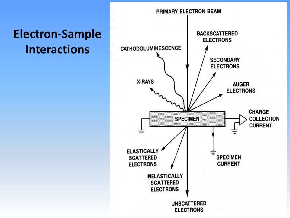 Precise x-ray intensities High spectral resolution Sub-micron spatial resolution Matrix/standard independent Accurate quantitative chemistry Electron-Sample Interactions