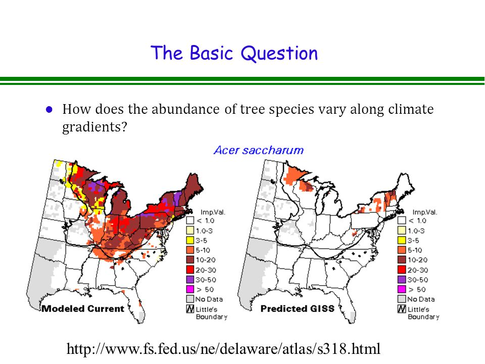 The Basic Question l How does the abundance of tree species vary along climate gradients.