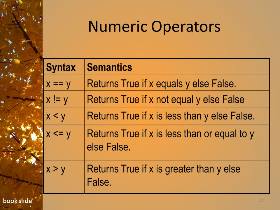 Numeric Operators 21 book slide