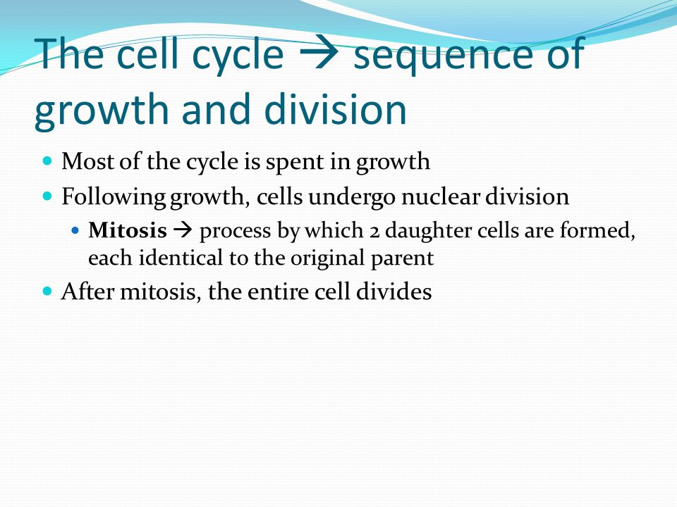 The cell cycle  sequence of growth and division Most of the cycle is spent in growth Following growth, cells undergo nuclear division Mitosis  process by which 2 daughter cells are formed, each identical to the original parent After mitosis, the entire cell divides