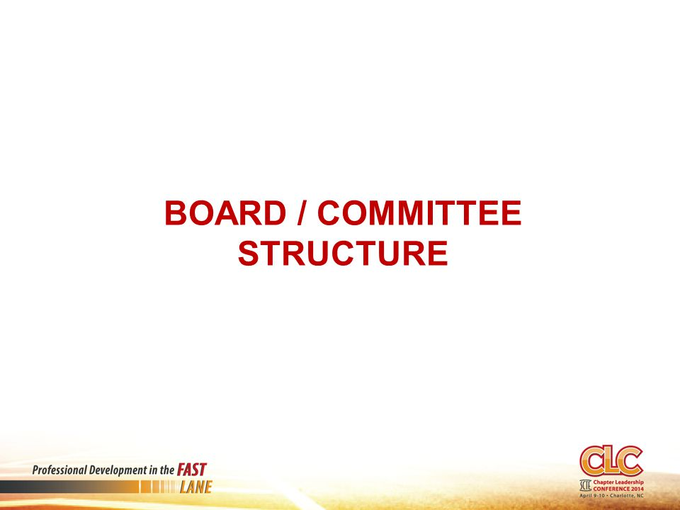 BOARD / COMMITTEE STRUCTURE