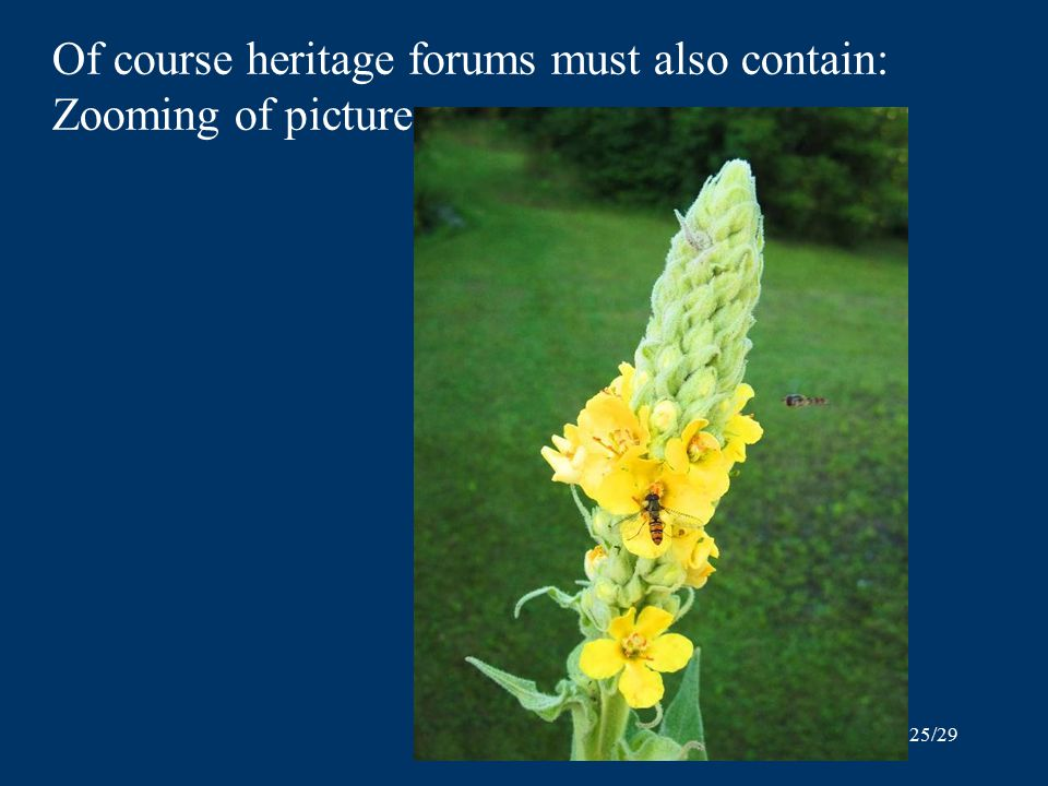25/29 Of course heritage forums must also contain: Zooming of pictures