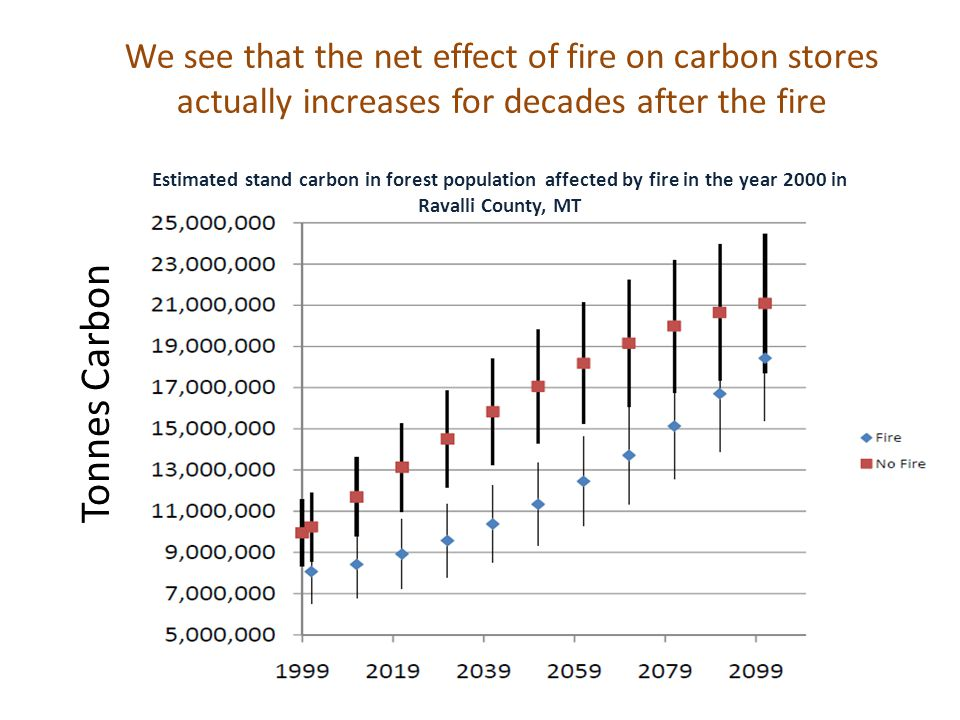 We see that the net effect of fire on carbon stores actually increases for decades after the fire Estimated stand carbon in forest population affected by fire in the year 2000 in Ravalli County, MT Tonnes Carbon