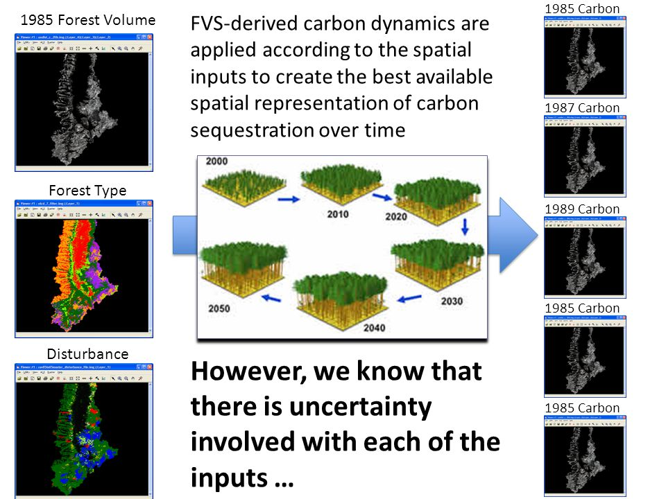 1985 Forest Volume Forest Type Disturbance 1985 Carbon 1987 Carbon 1989 Carbon 1985 Carbon FVS-derived carbon dynamics are applied according to the spatial inputs to create the best available spatial representation of carbon sequestration over time However, we know that there is uncertainty involved with each of the inputs …