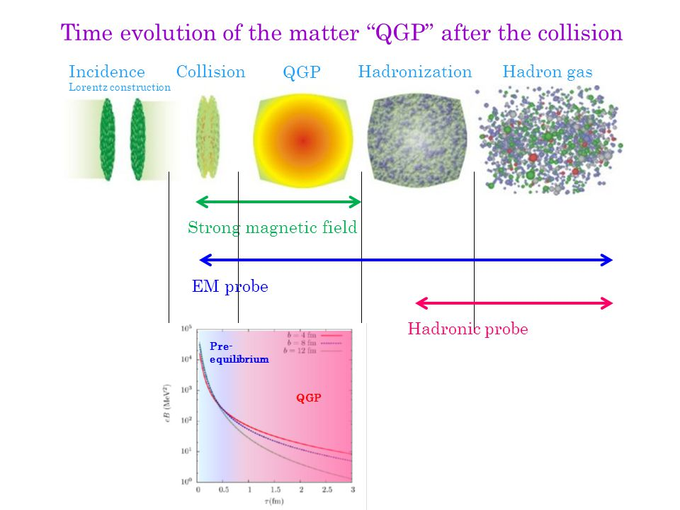Magnetic field QGP Photon splitting: γ+B  2γ, avoiding Furry's theorem Refraction of photon, without Lorentz symmetry Dilepton emission from real photon decay, as well as virtual photon γ*  e + e - Modifications of photon propagations by nonlinear QED effects Photon vacuum polarization tensor with the dressed fermion propagators: Modified Maxwell eq.