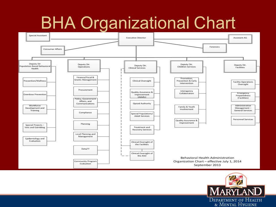 BHA Organizational Chart