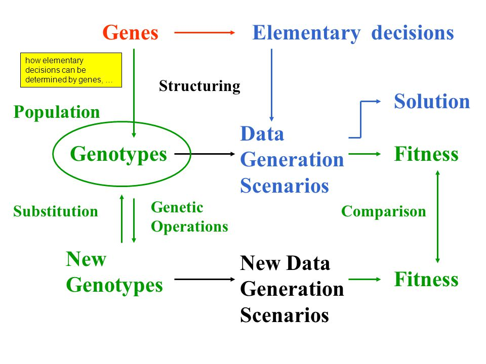 GenesElementary decisions Genotypes Data Generation Scenarios Fitness New Data Generation Scenarios Fitness Genetic Operations Substitution Population Solution Structuring Comparison New Genotypes how elementary decisions can be determined by genes, …