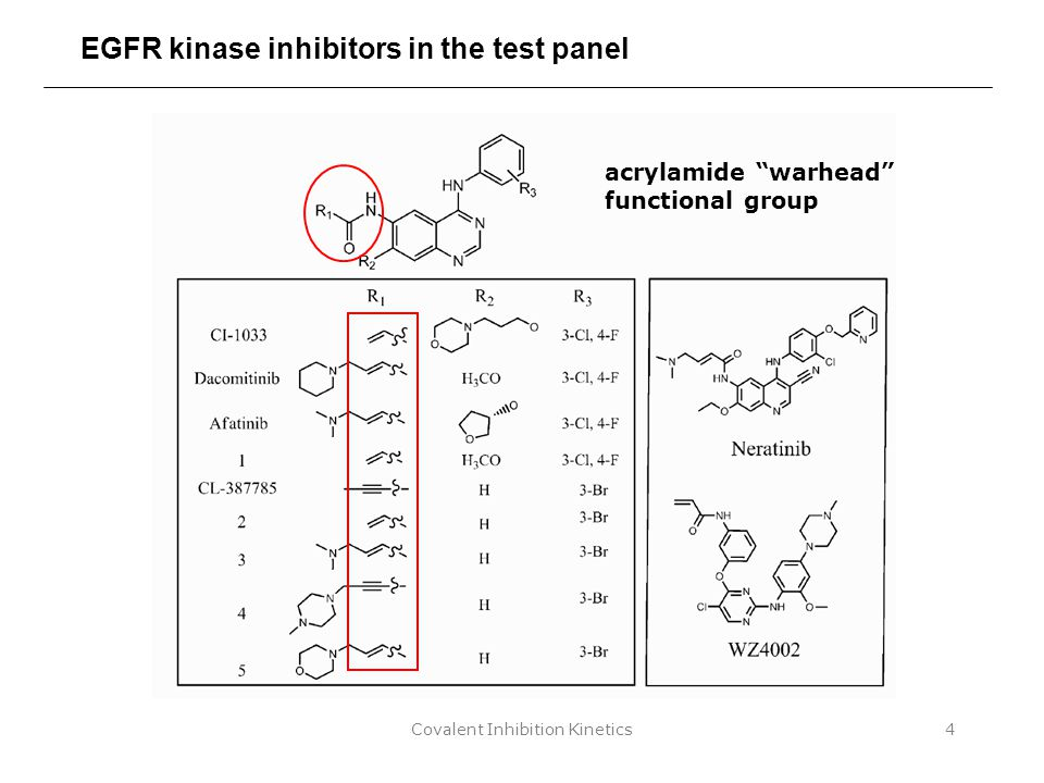 "Covalent Inhibition Kinetics4 EGFR kinase inhibitors in the test panel acrylamide ""warhead"" functional group"