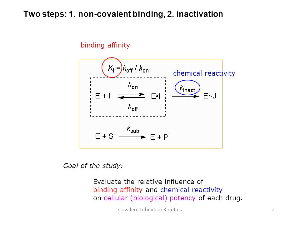 Covalent Inhibition Kinetics7 Two steps: 1. non-covalent binding, 2. inactivation binding affinity chemical reactivity Goal of the study: Evaluate the