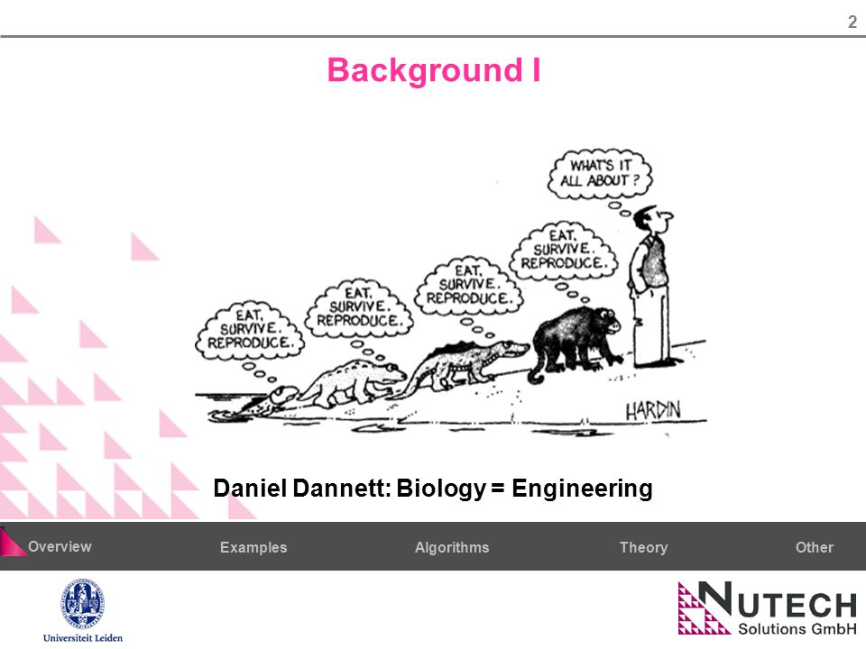 2 AlgorithmsTheoryExamples Overview Other Background I Daniel Dannett: Biology = Engineering