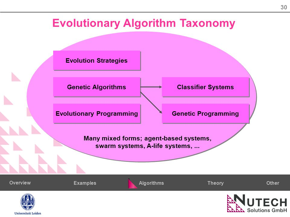 30 AlgorithmsTheoryExamples Overview Other Evolutionary Algorithm Taxonomy Evolution Strategies Genetic Algorithms Genetic Programming Evolutionary Programming Classifier Systems Many mixed forms; agent-based systems, swarm systems, A-life systems,...