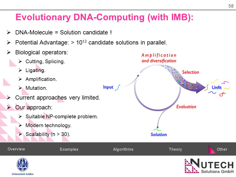 58 AlgorithmsTheoryExamples Overview Other Evolutionary DNA-Computing (with IMB):  DNA-Molecule = Solution candidate .