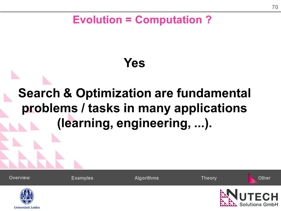 70 AlgorithmsTheoryExamples Overview Other Evolution = Computation ? Yes Search & Optimization are fundamental problems / tasks in many applications (