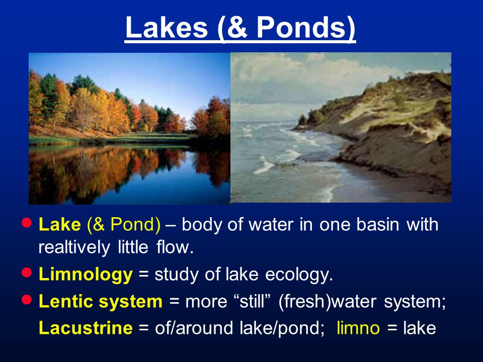 Lakes (& Ponds)  Lake (& Pond) – body of water in one basin with realtively little flow.