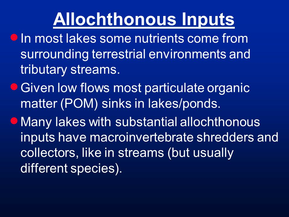 Allochthonous Inputs  In most lakes some nutrients come from surrounding terrestrial environments and tributary streams.