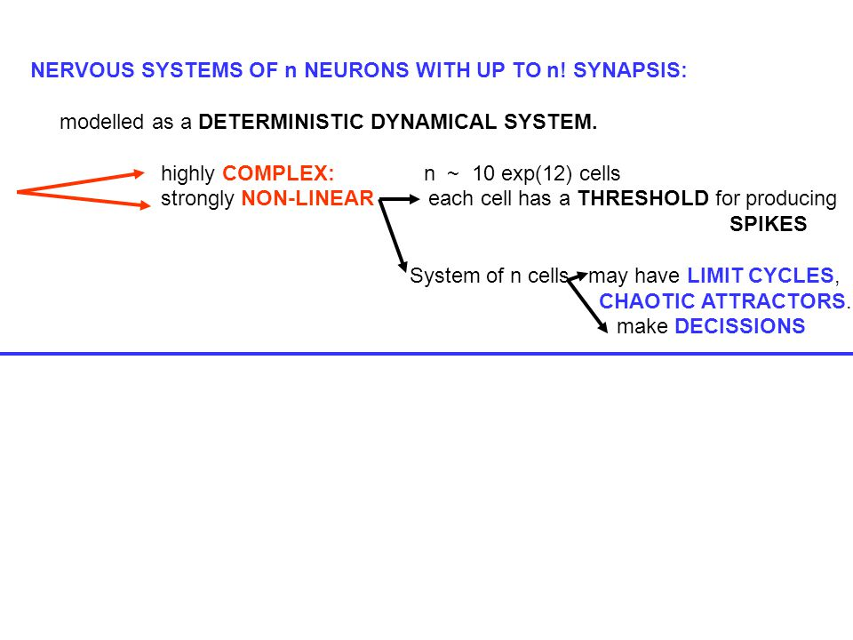 NERVOUS SYSTEMS OF n NEURONS WITH UP TO n. SYNAPSIS: modelled as a DETERMINISTIC DYNAMICAL SYSTEM.