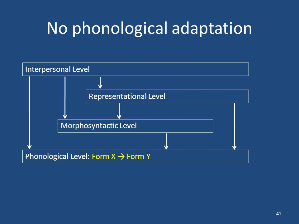 No phonological adaptation 41 Interpersonal Level Representational Level Morphosyntactic Level Phonological Level: Form X → Form Y