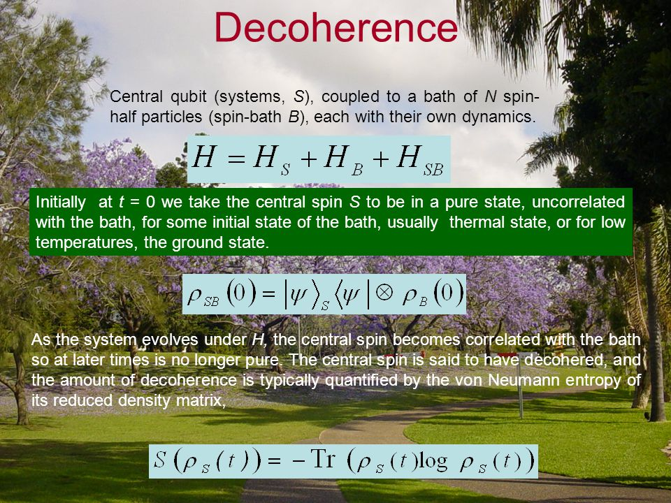 Decoherence As the system evolves under H, the central spin becomes correlated with the bath so at later times is no longer pure. The central spin is