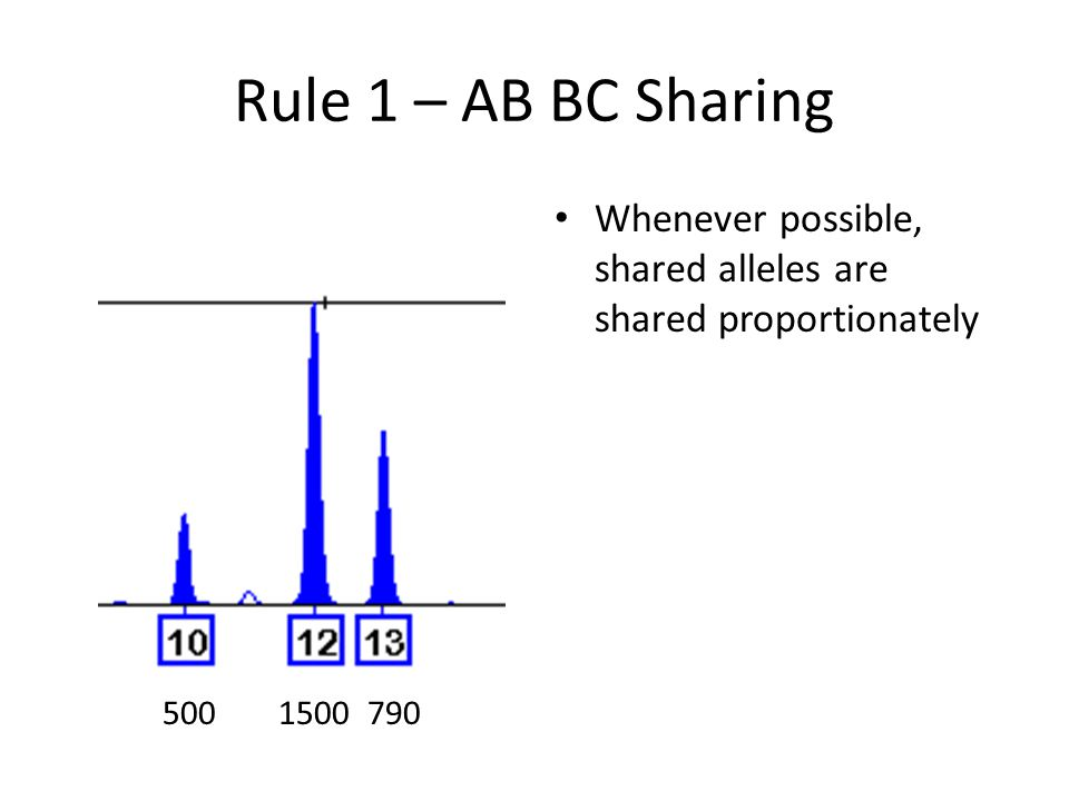 Rule 1 – AB BC Sharing Whenever possible, shared alleles are shared proportionately 5001500790