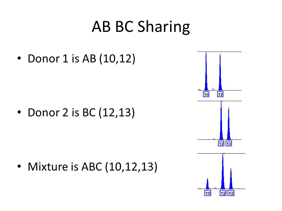 All combinations for 2 people Grouped by number of alleles Sub-grouped by homozygotes/heterzygotes and sharing/no-sharing
