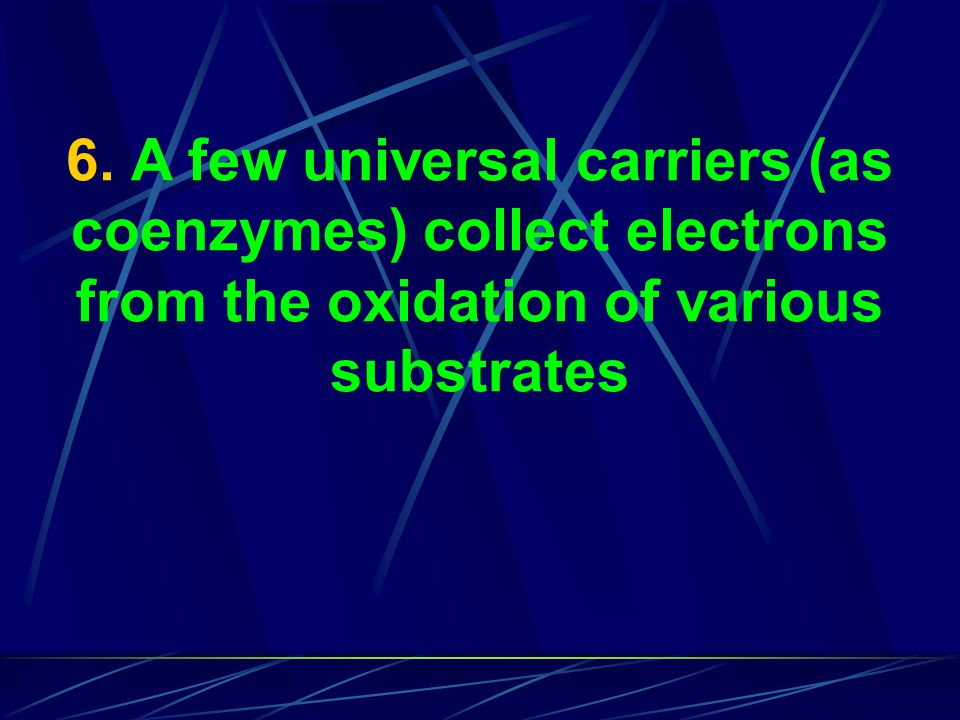 6. A few universal carriers (as coenzymes) collect electrons from the oxidation of various substrates