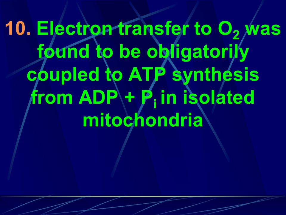 10. Electron transfer to O 2 was found to be obligatorily coupled to ATP synthesis from ADP + P i in isolated mitochondria