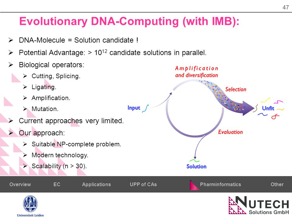47 PharminformaticsOtherECUPP of CAsApplicationsOverview Evolutionary DNA-Computing (with IMB):  DNA-Molecule = Solution candidate .