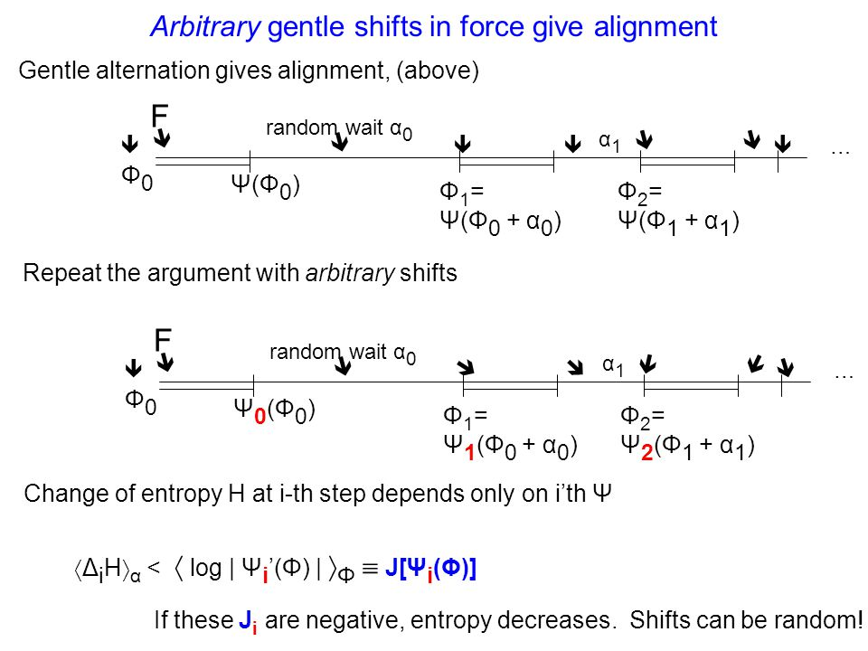 Arbitrary gentle shifts in force give alignment F   Ψ(Φ0)Ψ(Φ0) Φ0Φ0 random wait α 0 Φ 1 = Ψ(Φ 0 + α 0 )  α1α1 Φ 2 = Ψ(Φ 1 + α 1 )  …   Gentle alternation gives alignment, (above) Repeat the argument with arbitrary shifts F   Ψ0(Φ0)Ψ0(Φ0) Φ0Φ0 random wait α 0 Φ 1 = Ψ 1 (Φ 0 + α 0 )   α1α1 Φ 2 = Ψ 2 (Φ 1 + α 1 )  …    Change of entropy H at i-th step depends only on i'th Ψ  Δ i H  α <  log | Ψ i '(Φ) |  Φ  J[Ψ i (Φ)] If these J i are negative, entropy decreases.