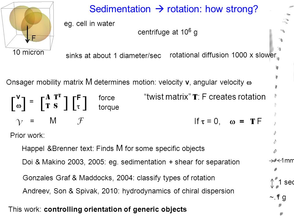 Sedimentation  rotation: how strong? eg. cell in water sinks at about 1 diameter/sec centrifuge at 10 6 g rotational diffusion 1000 x slower Onsager