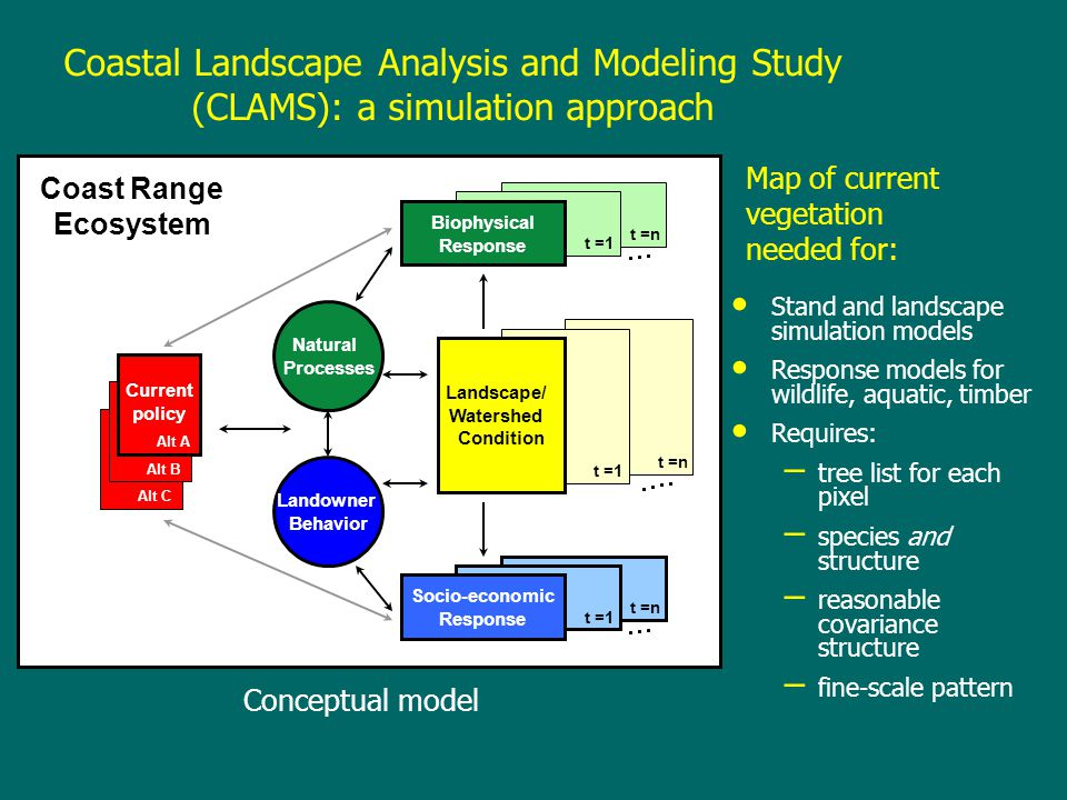 Coastal Landscape Analysis and Modeling Study (CLAMS): a simulation approach Current policy Alt A Alt B Alt C Natural Processes Landowner Behavior t =1 Biophysical Response t =n Landscape/ Watershed Condition t =1 t =n Socio-economic Response t =1 Coast Range Ecosystem t =n Conceptual model Map of current vegetation needed for: Stand and landscape simulation models Response models for wildlife, aquatic, timber Requires: – tree list for each pixel – species and structure – reasonable covariance structure – fine-scale pattern