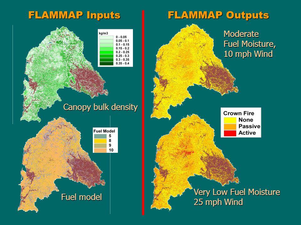 FLAMMAP Inputs Canopy bulk density Fuel model Moderate Fuel Moisture, 10 mph Wind Very Low Fuel Moisture 25 mph Wind FLAMMAP Outputs